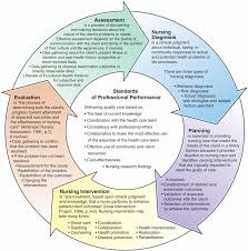 Adpie Charting The Nursing Process Hesi Review Nursing Process Nursing