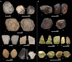 19 Million And 24 Million Year Old Artifacts And Stone Tool