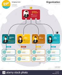 Organizational Chart Infographic Business Flowchart Stock
