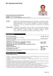 Resume Template Professional Resume Samples Doc Free Career