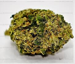 order weed from amsterdam