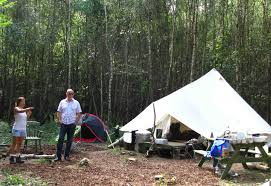 camping in the woods. Contemporary The Camp And Camping In The Woods I