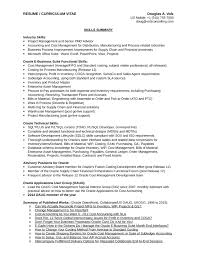 Executive Business Process Analyst Resume Page2