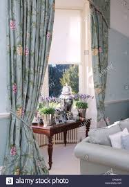 Pale Blue Living Room Pots Of Lavender On Table In Window With Pale Blue Floral Curtains