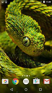 Snake Live Wallpaper HD for Android ...