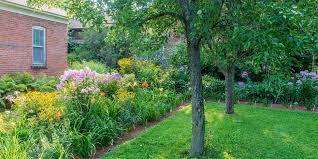 Understanding Your Yard's Sunlight | Better Homes & Gardens