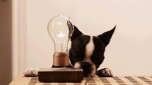 Левитационные лампы