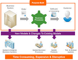 Incremental Revenue From Innovative Software License Models