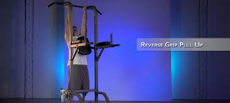How To Use Your Power Tower Guide To Exercises