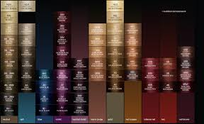 Color Formulation Chart Shade Chart Zotosprofessional Com