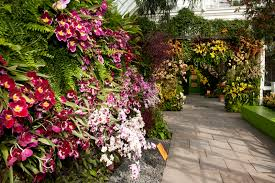 i m a big fan of the annual orchid show at the ny botanical garden and i m thrilled to be hosting a giveaway to send a family to experience it for