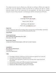 perl programmer resume resume for computer programmer sales programmer lewesmr