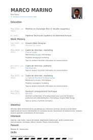 Graphic/Web Designer Resume samples