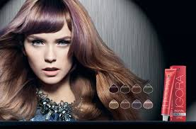 Цветовая палитра <b>красок Schwarzkopf Igora</b> Royal Color: виды и ...