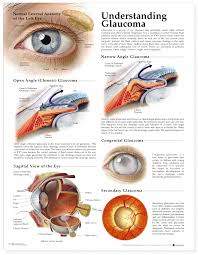 Eye Diseases Chart Pin On Eye Diseases