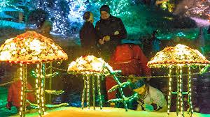 magic toadstools light the way at brookside gardens garden of lights