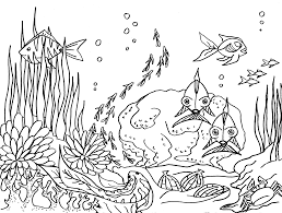 Coloriage Fond Sous Marinll