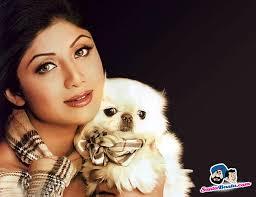 Shilpa Shetty - shilpa-shetty-53-d