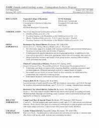 15 Inspirational University Professor Resume Sample Resume