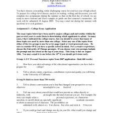 graduate school admissions essay examples resume graduate school admissions essay examples delightful essay example graduate graduate school essay format