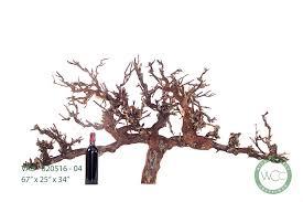 old grape vine wall art