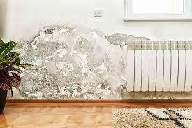 Typische Stellen Für Schimmel In Wohnungen Innotech Gmbh