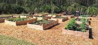 much soil your raised bed needs
