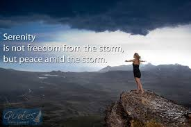 Serenity Quotes Unique Serenity Is Not Freedom From The Storm Quotes