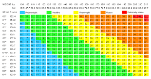 Obesity Chart For Women Health Care Services At Home Home Health Care Services In