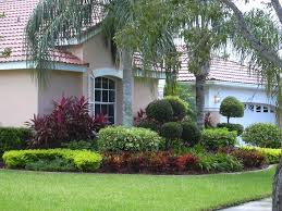 Landscape, Terrific Green Round Modern Grass Landscaping Idea Ornamental  Coconut Tree Ideas: Best landscaping