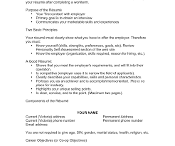 Professional Gray What Is A Resume Objective Sample Entry Level