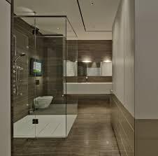 transparent wall panels. Transparent Wall Panels. Bathroom, Impressive Bathroom Wood Accent Modern Powder Room Vanity And Panels N