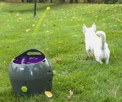 automatic pet ball launcher