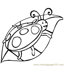 Small Picture Ladybug on leaf Coloring Page Free ladybugs Coloring Pages