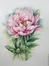 купить рисунок розовый пион акварель розовый пион пион рисунок
