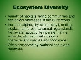 Species Diversity Definition 3b 1 Introduction To Biodiversity