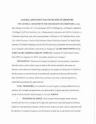 essay about teaching grammar scrivener download