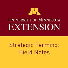 Strategic Farming: Field Notes