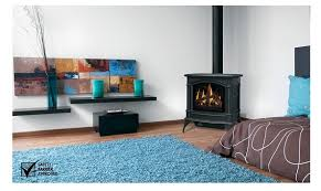napoleon gas stove. Beautiful Gas GDS601 Direct Vent Gas Stove By Napoleon To E