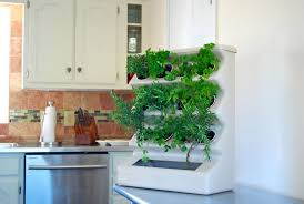 Small Picture Stunning Kitchen Garden Indoor 17 Best Ideas About Indoor