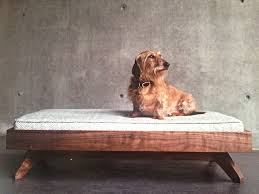 modern dog furniture. PUP \u0026amp; KIT - MODERN Modern Dog Furniture