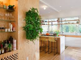 Decorating with Plants Indoors   How to Decorate Kitchen with Green Indoor  Plants and Save Money