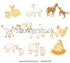 mother and baby animal clipart. Plain Animal Farm Baby Animals Mother Set Family Stock Vector HD Intended And Animal Clipart T