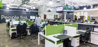 software company office. Person Photo Software Company Office M