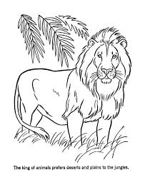 Small Picture Lion the King of Animals Coloring Page Color Luna
