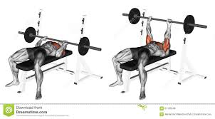 Weight Lifting Chains  EBayBench Press Chains For Sale