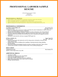 Examples Of Professional Profile On Resume Professional Profile On Resume How To Write A Professional Profile 11