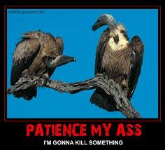 Patience my ass cartoon