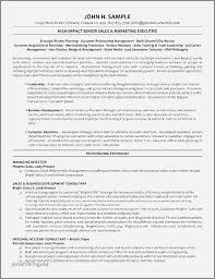 Data Management Resume Examples Luxury Images Financial Management
