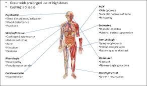 Steroids Side Effects Side Effects Of Steroids 5 Reasons To Take Steroids